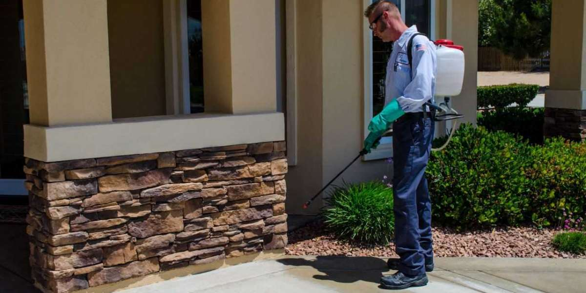 Pros and Cons of DIY Pest Control