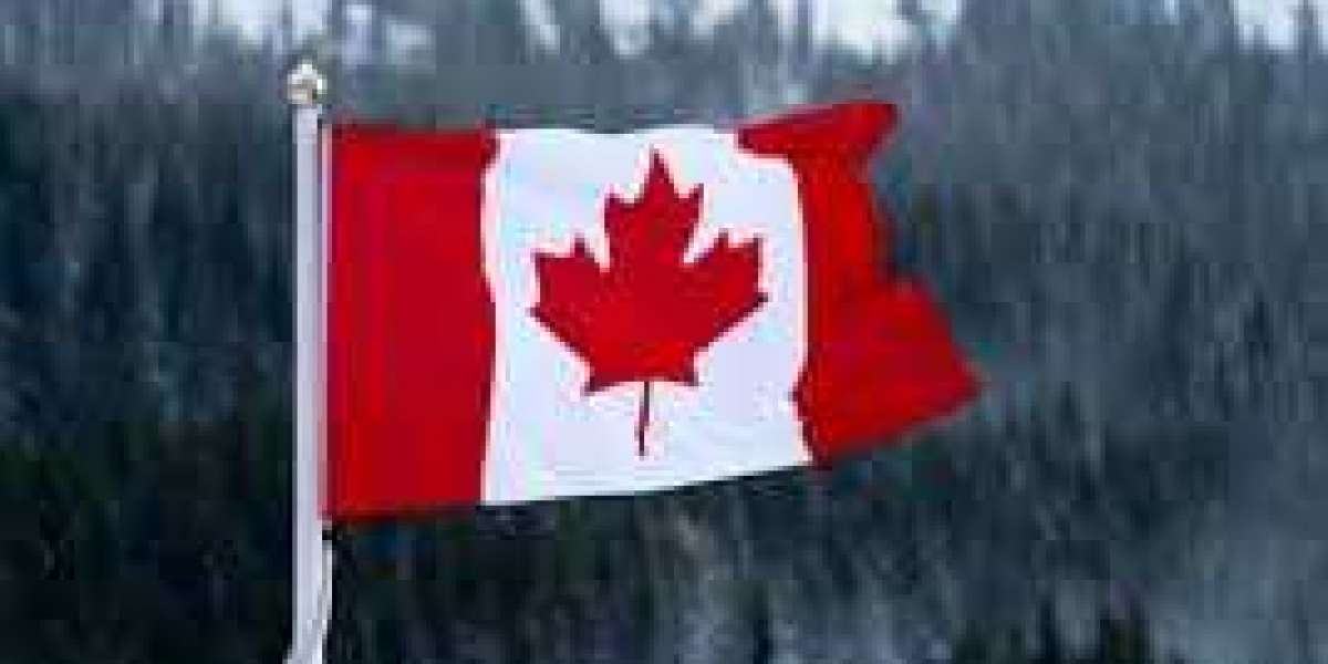 Best immigration Agents for Canada